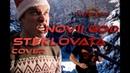 Steklovata - Novy God (Cover)