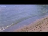 «Д'Артаньян и три мушкетёра» (1979), 2-я серия, приключения, реж. Георгий Юнгвальд-Хилькевич
