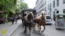 День города, лошадиный трамвайчик 😀🚃München Stadtgründungsfest Pferdetram 18 06 2016