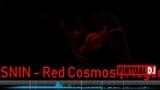 YURI SOSNIN- Red Cosmos( Megamix Dream 2k18)