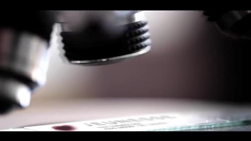[KOSMO] ЧТО ПРОИЗОЙДЕТ ДО 2220 ГОДА? 7 ПРЕДСКАЗАНИЙ СТИВЕНА ХОКИНГА