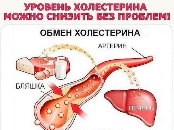 Снизить уровень холестерина и оздоровить весь организм!