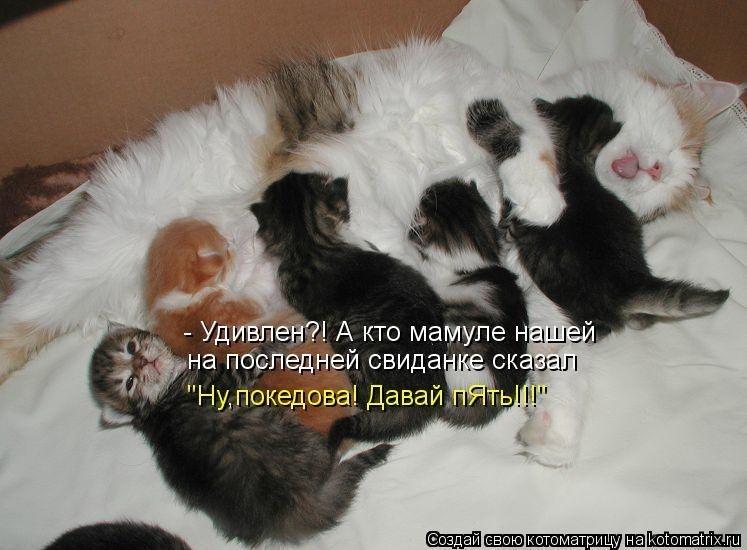 http://cs411224.userapi.com/v411224820/4920/3J_F2Tr7EnI.jpg