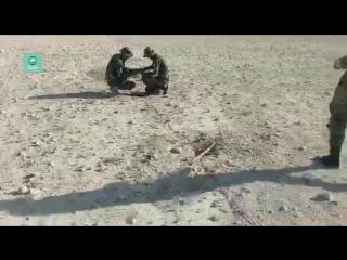 Сирия: САА очищает Пальмиру от СВУ и мин-ловушек