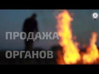 Торговля органами в Украине. Фильм-расследование Андрея Павловского.