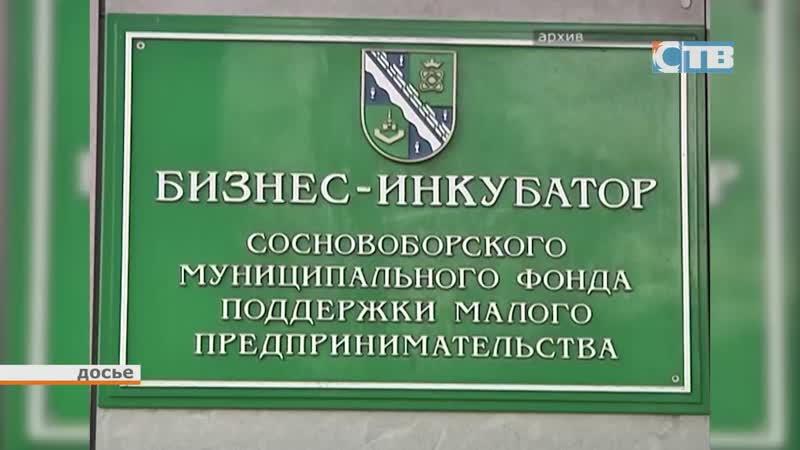 15.11.2018 Поддержка малого и среднего бизнеса Ленинградской области в 2019 году