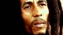 Боб Марли 2012 О богатстве, благотворительности