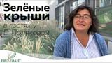 Сады на крышах. В гостях у Елены Поляковой.