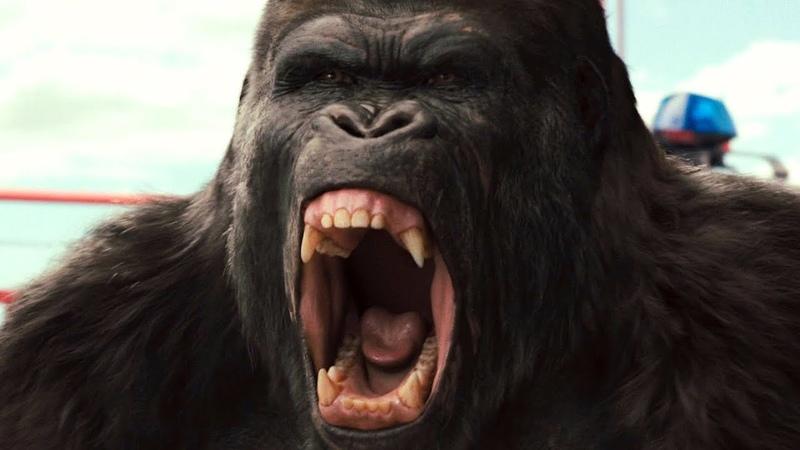 Горилла спасает Цезаря. Сцена с вертолётом. Восстание планеты обезьян (2011) год.