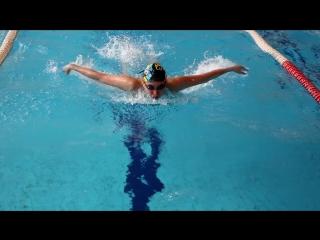 Плавание (взрослые) и водное поло