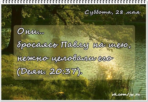 Исследуем Писания каждый день 2016 - Страница 5 0qVSL8CIWrU