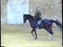 Une des dernières fois où le Maître est monté à cheval