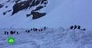 Лавина в Швейцарии накрыла туристов