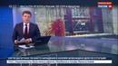 Новости на Россия 24 Новый погром в здании Россотрудничества в Киеве неонацистов никто не остановил