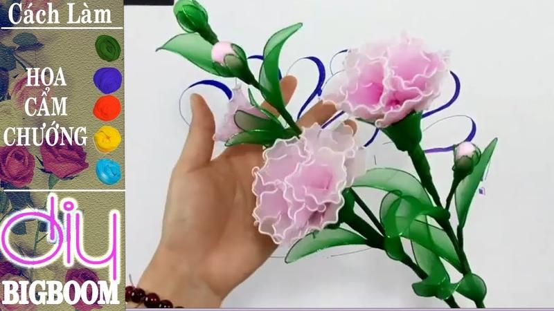 Hướng dẫn cách tự làm Hoa Cẩm Chướng bằng vải voan đơn giản | DBB-VN
