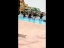 танцы аниматоров в Тунисе