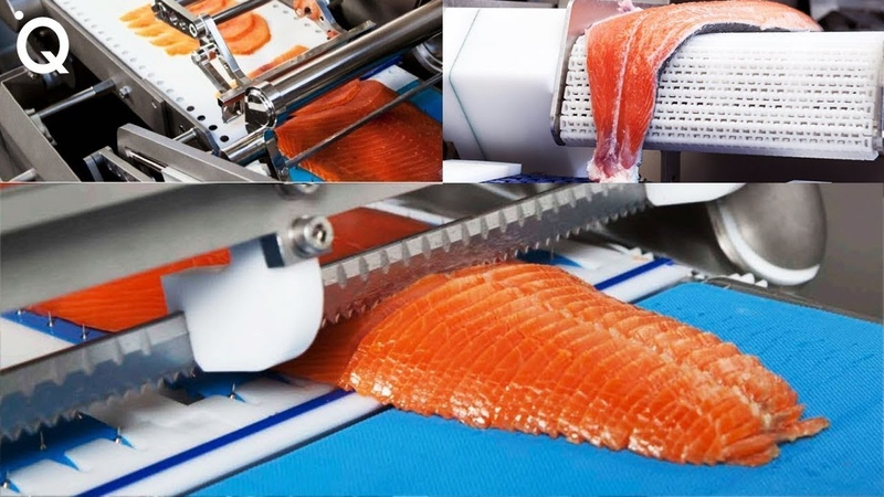 Food Industry Machines That Are At Another Level