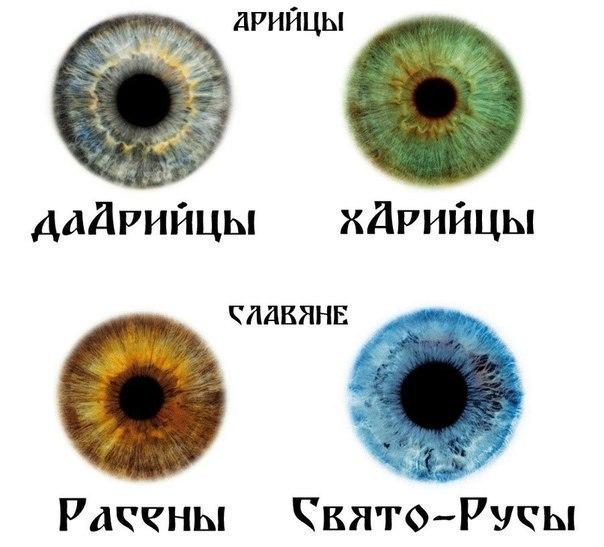 серый цвет глаз фото: