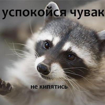 Артем Ахметшин, 24 ноября , Уфа, id117647870