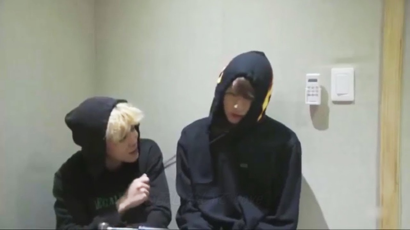 JIMIN and JUNGKOOK (지민 정국 BTS) TOM JERRY Ver.