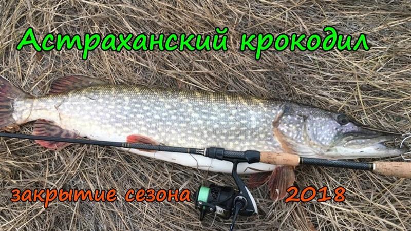 Закрытие сезона 2018 , трофейной щукой . Trophy pike closing season 2018