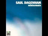Saul Dagenham - Wintermute (preview) Situate Audio