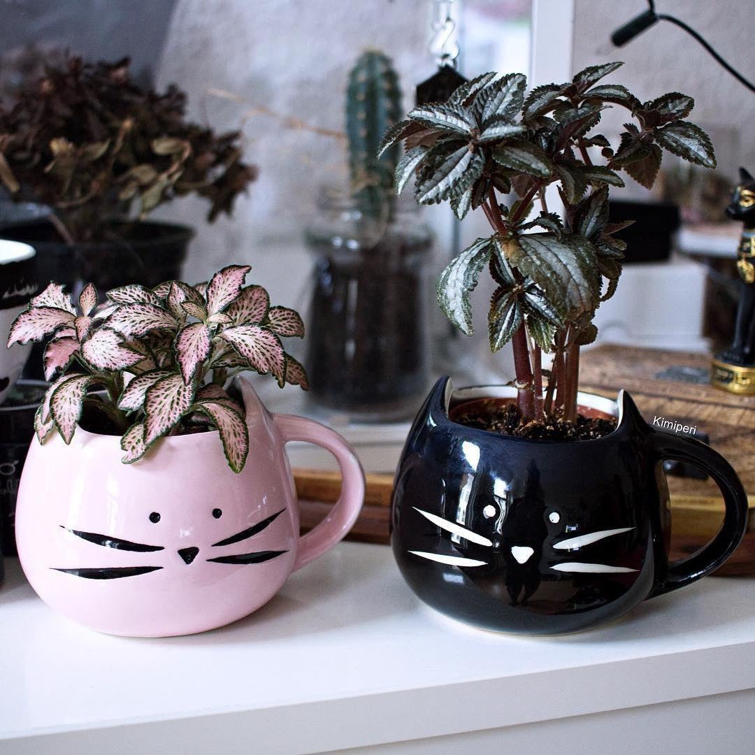 Очаровательные чашки -