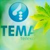 Тема-Телеком, Официальное сообщество