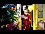 «Зенит-ТВ»: сине-бело-голубые и «Смешарики» устроили новогодние праздники
