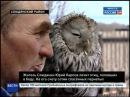 Птиц, попавших в беду, лечит житель Слюдянки Юрий Карпов, Вести-24. Иркутск