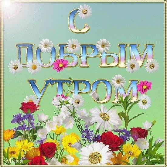 http://cs402830.userapi.com/v402830547/39c/TJ_ikSG5UnI.jpg
