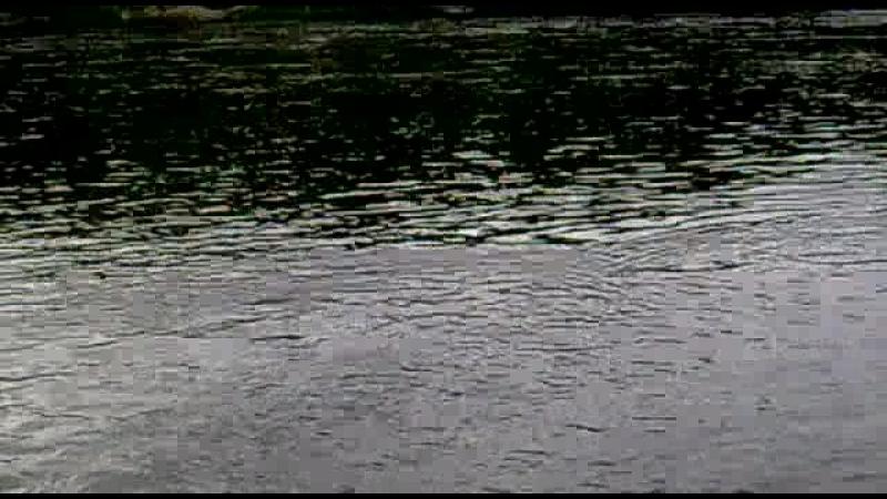 Река Кола, п. Молочный.