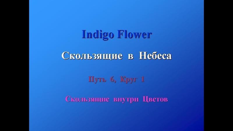 InDaoYan - Скользящие в Небеса (часть 6 - Скользящие внутри Цветов)