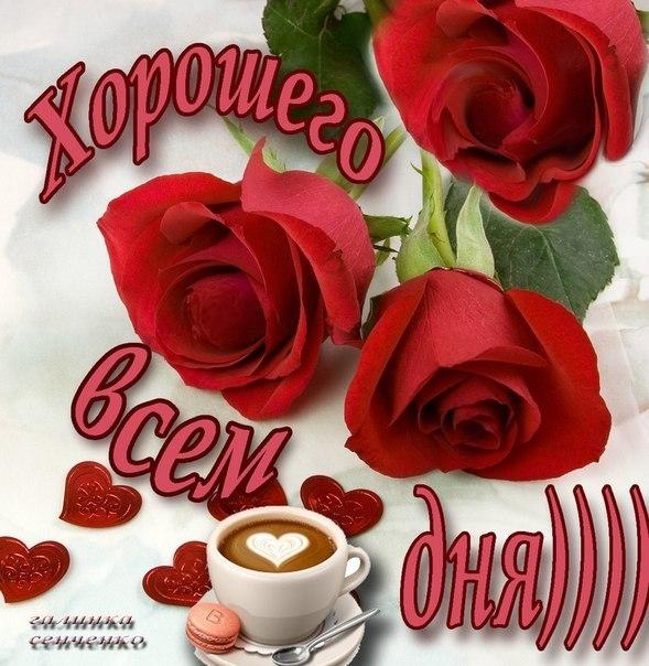 http://cs312525.vk.me/v312525458/57b6/KvW7J_vsZZQ.jpg