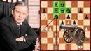 Шахматы Алехин Нимцович знаменитая пушка Алехина в действии