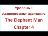 The Elephant Man - Chapter 4 - Merricks first home - Elementary level