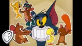 Tom &amp Jerry Jerry Saves the Day! Classic Cartoon Compilation WB Kids