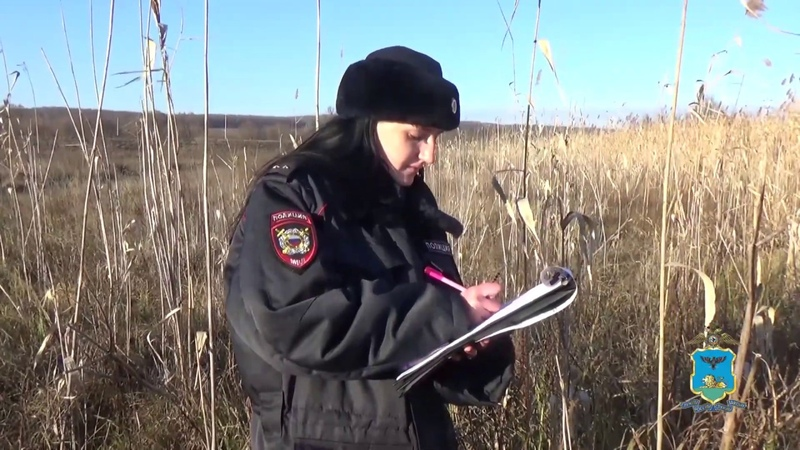 Сотрудники ДПС обнаружили тушу незаконно добытого оленя в багажнике автомобиля