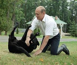 """Moody's понизило рейтинг """"Газпрома"""" и пересматривает место еще 45 российских компаний - Цензор.НЕТ 4064"""