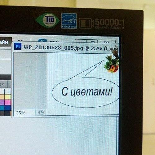Села муха на мой монитор, смешные поздравления с днем онлайн