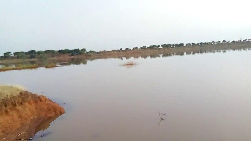 Святое и древнее озеро в районе Басавакальян (Basavakalyan). Карнатака. Индия.