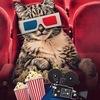 Кинолюбители - Лучшие фильмы