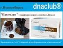 Dnaclub® Панмелан парафармацевтик линейки Диэнай 2017