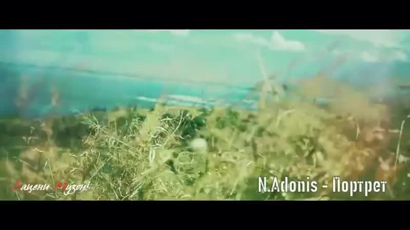 N.Adonis - Портрет