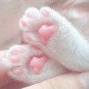 Только кошки знают, как получить пищу без труда, жилище без замка и любовь без треволнений.