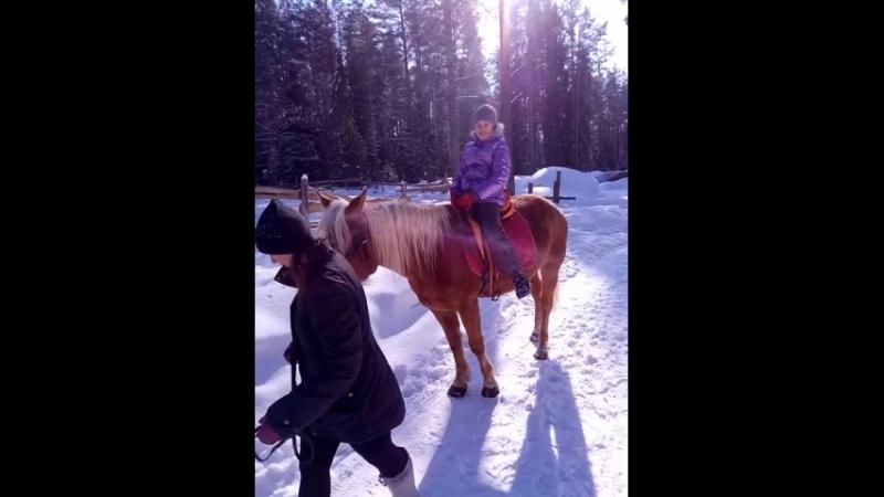 Я катаюсь на лошадях