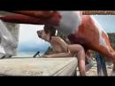 Porno_Land__Lara_with_horse_2_All_the_way_through_bonus_ATWT-spcs.me.mp4