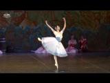 2017-05-17 Жизель Адольфа Адана. Главную роль исполняет прима-балерина Большого театра Нина Капцова.