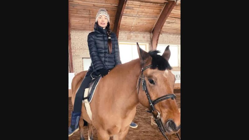 Рассказываю о лошадках, которые реабилитируют подопечных фонда «Подари ЗАВТРА!»