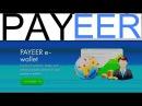 Как пополнить Payeer кошелек через сбербанковскую карту